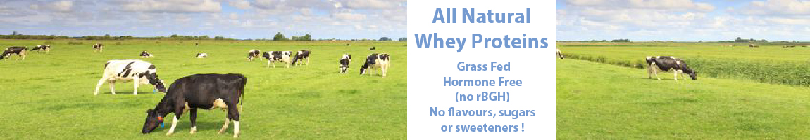 Grass fed hormone free cows